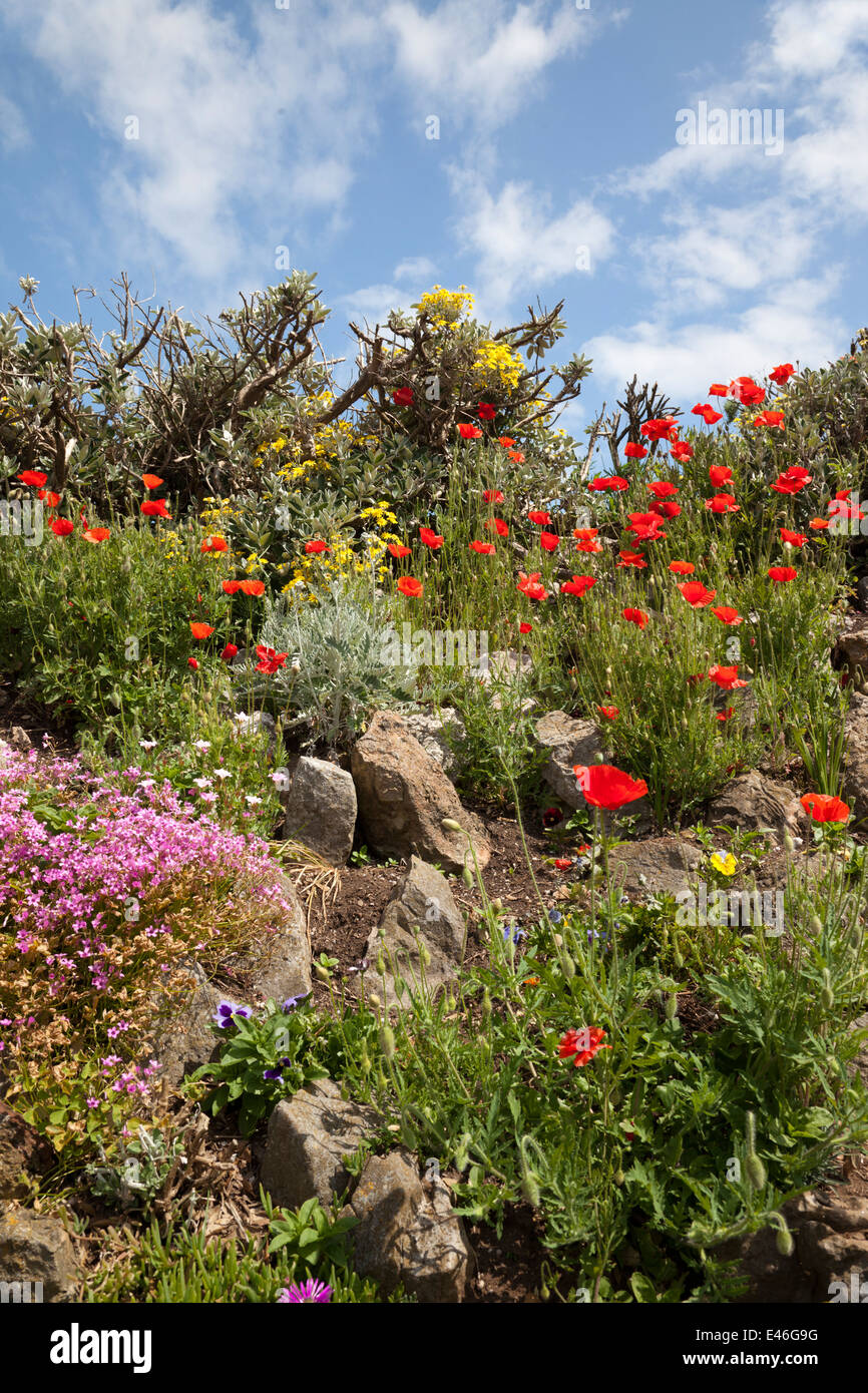 Prince Consort Gardens, Weston Super Mare, North Somerset, England ...