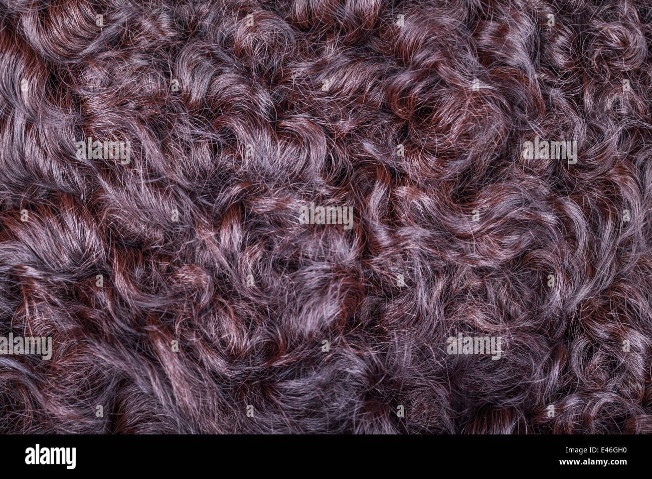 Karakul fur texture Stock Photo: 71444828 - Alamy