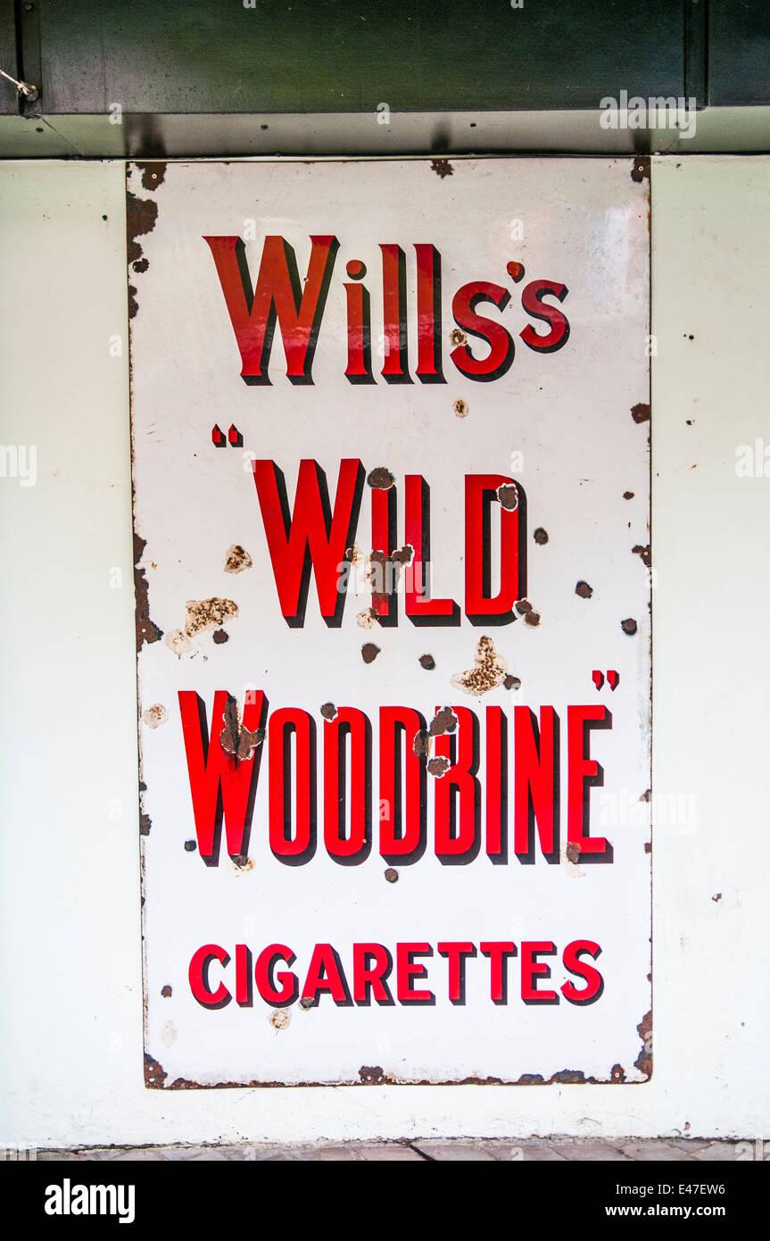 Metal sign advertising Wills's Wild Woodbine Cigarettes. - Stock Image