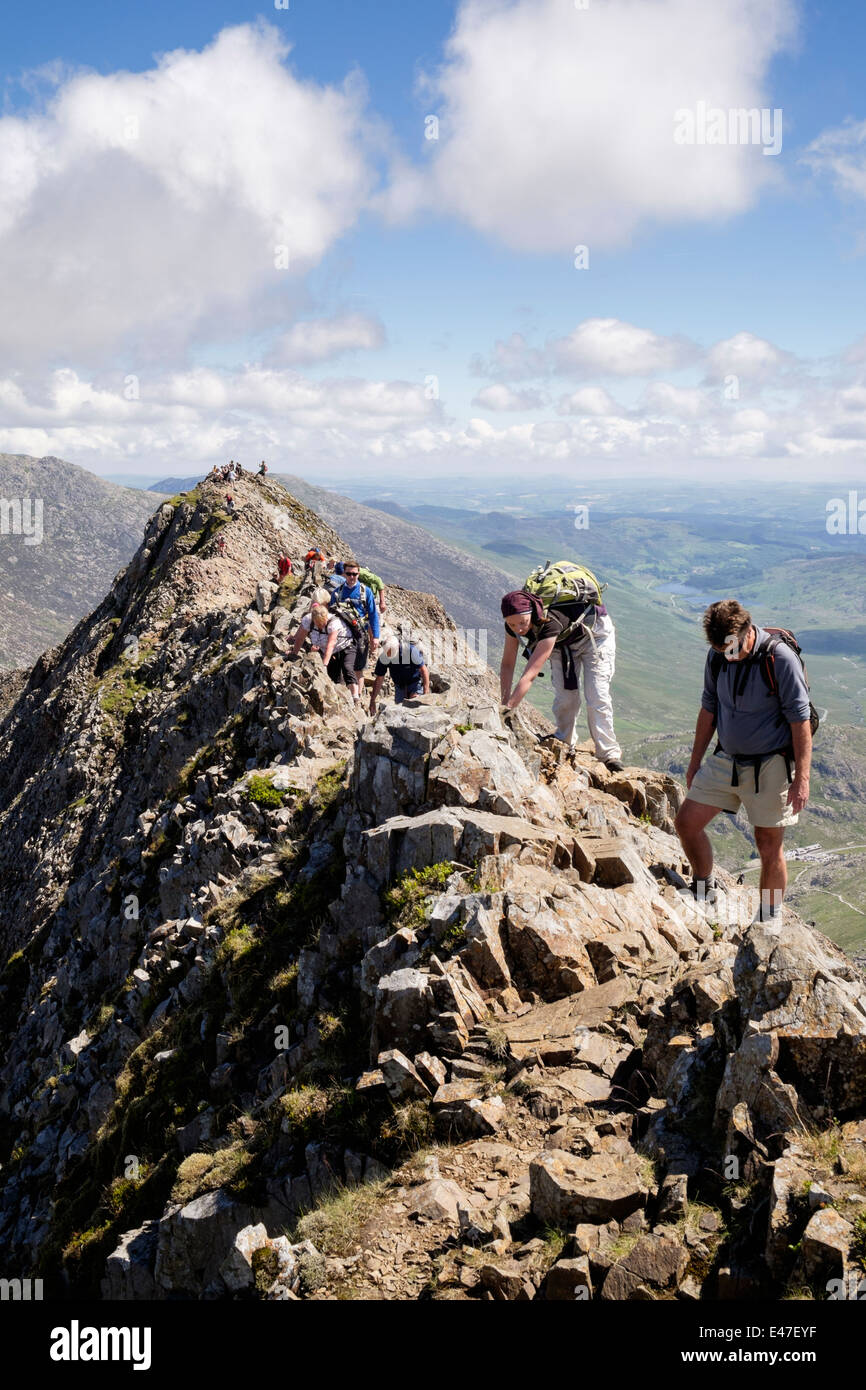 View along Crib Goch ridge top scramble with hikers scrambling at start of Snowdon Horseshoe in mountains of Snowdonia Stock Photo