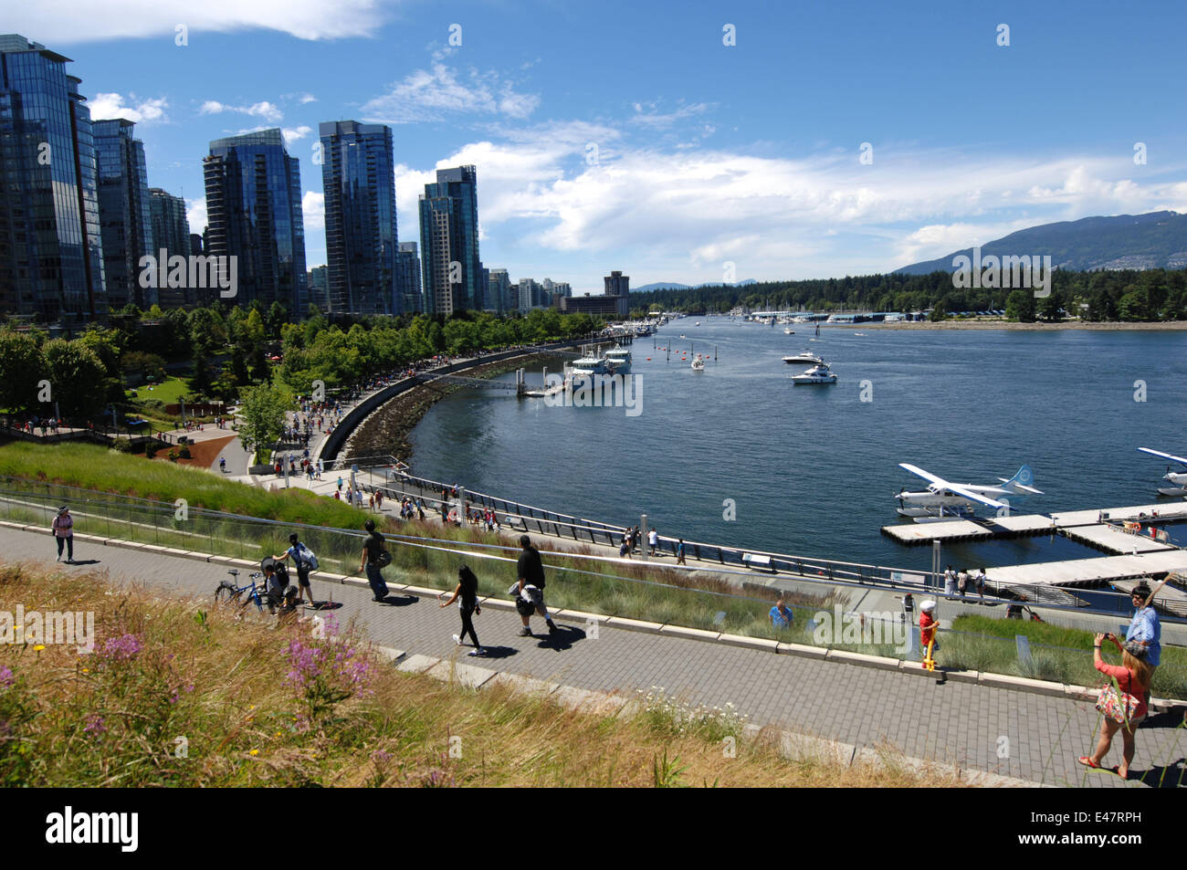Vancouver. 4th July, 2014. Photo taekn on July 4, 2014 shows the view of Coal Harbour area in Vancouver, Canada. - Stock Image