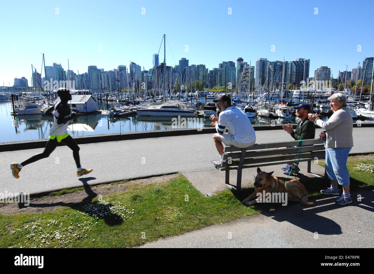 Vancouver, Canada. 4th July, 2014. People enjoy sunny day at Stanley Park, with Coal Harbour area in background, - Stock Image