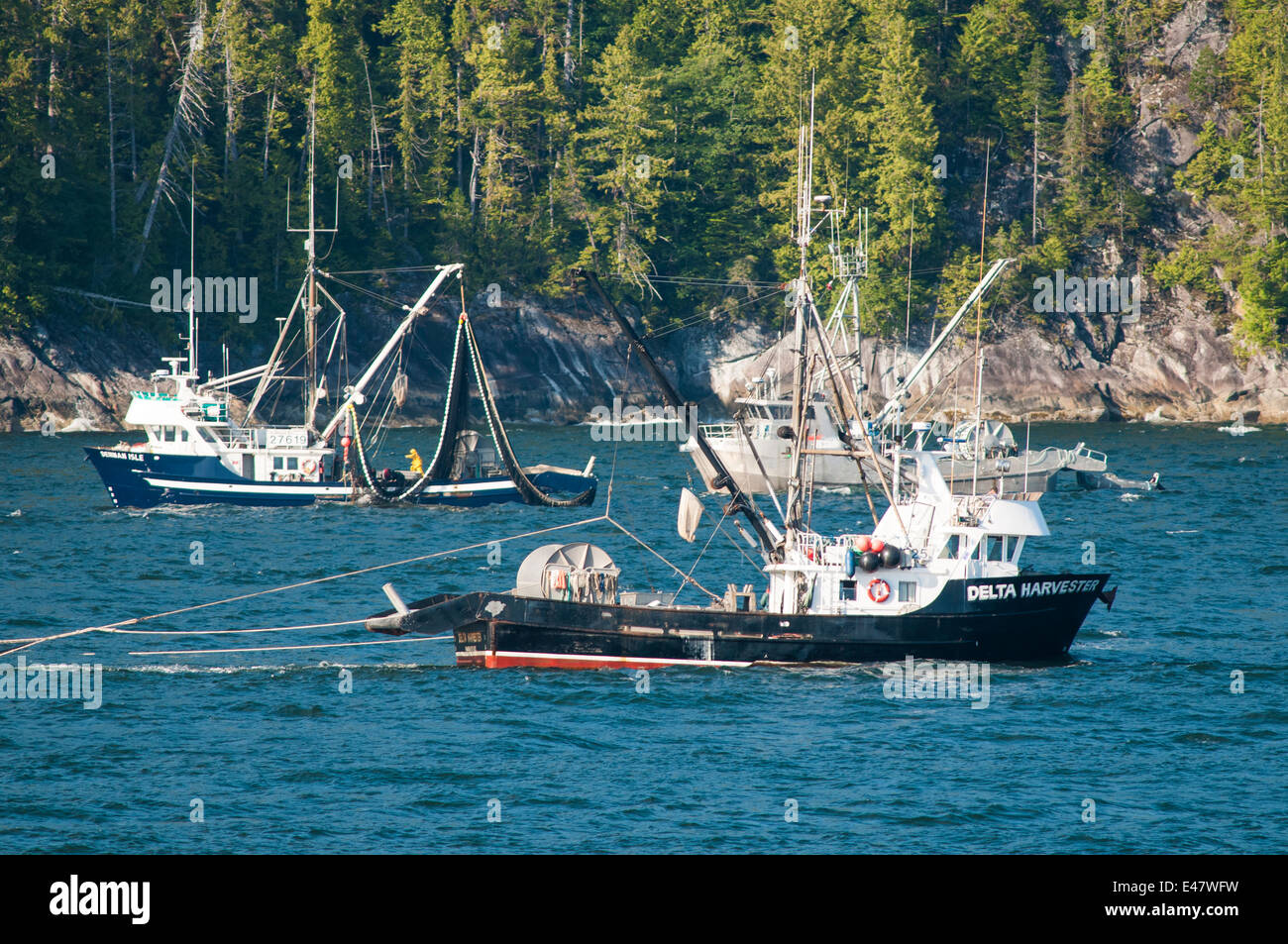 Trawling Vancouver Island
