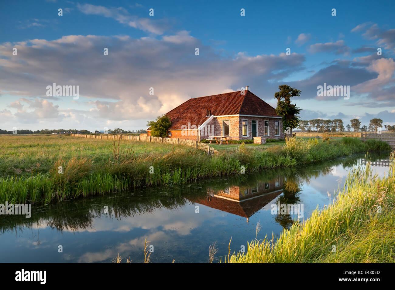 cozy farmhouse in gold sunset sunlight, Netherlands, - Stock Image
