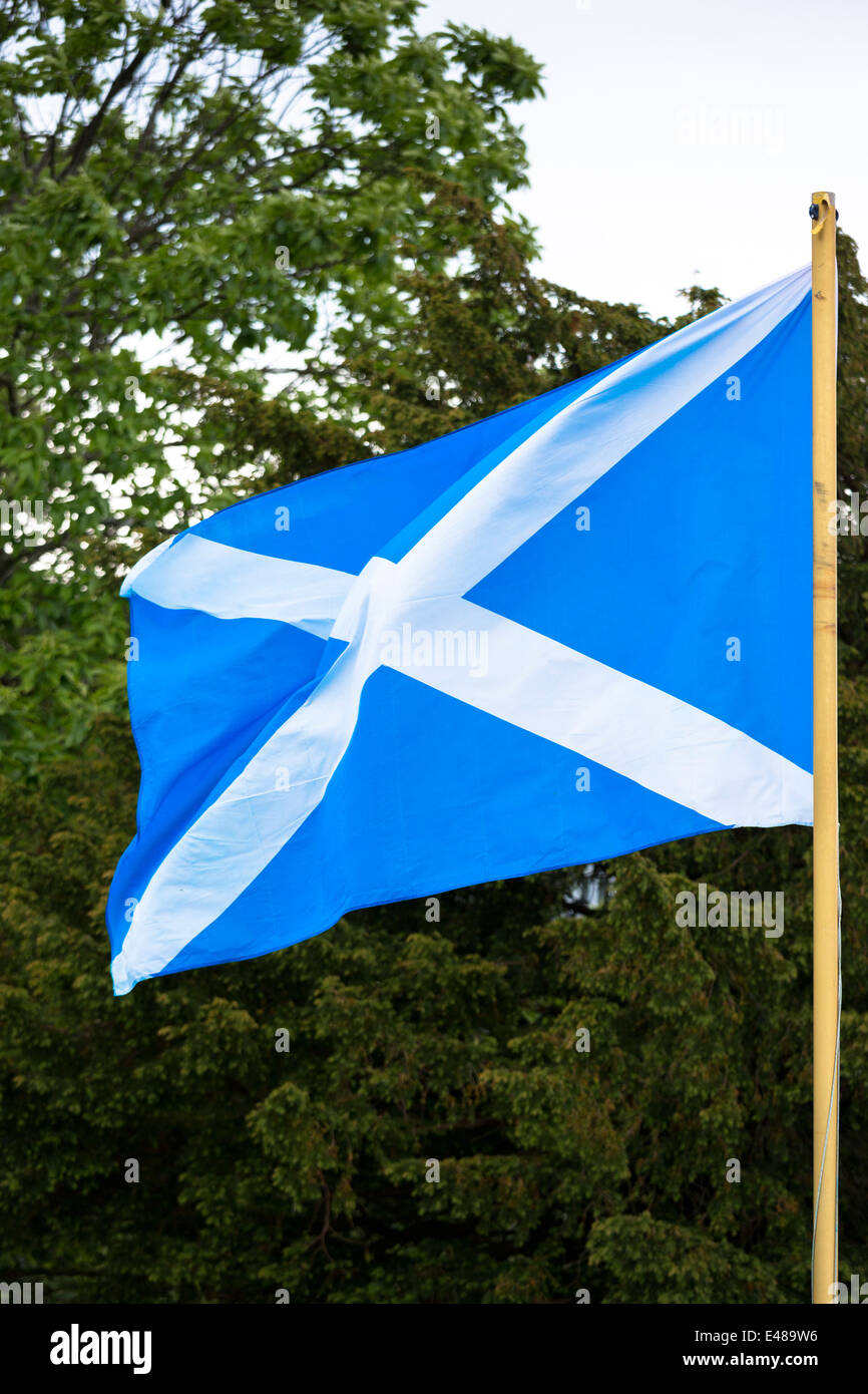 Saltire flag of St Andrew flying from flagpole as Scottish Referendum Independence campaign urges voters YES vote - Stock Image