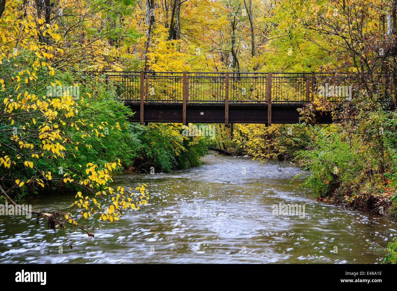 A Foot Bridge Over A River In Autumn At The Park, Sharon Woods, Southwestern Ohio, USA - Stock Image