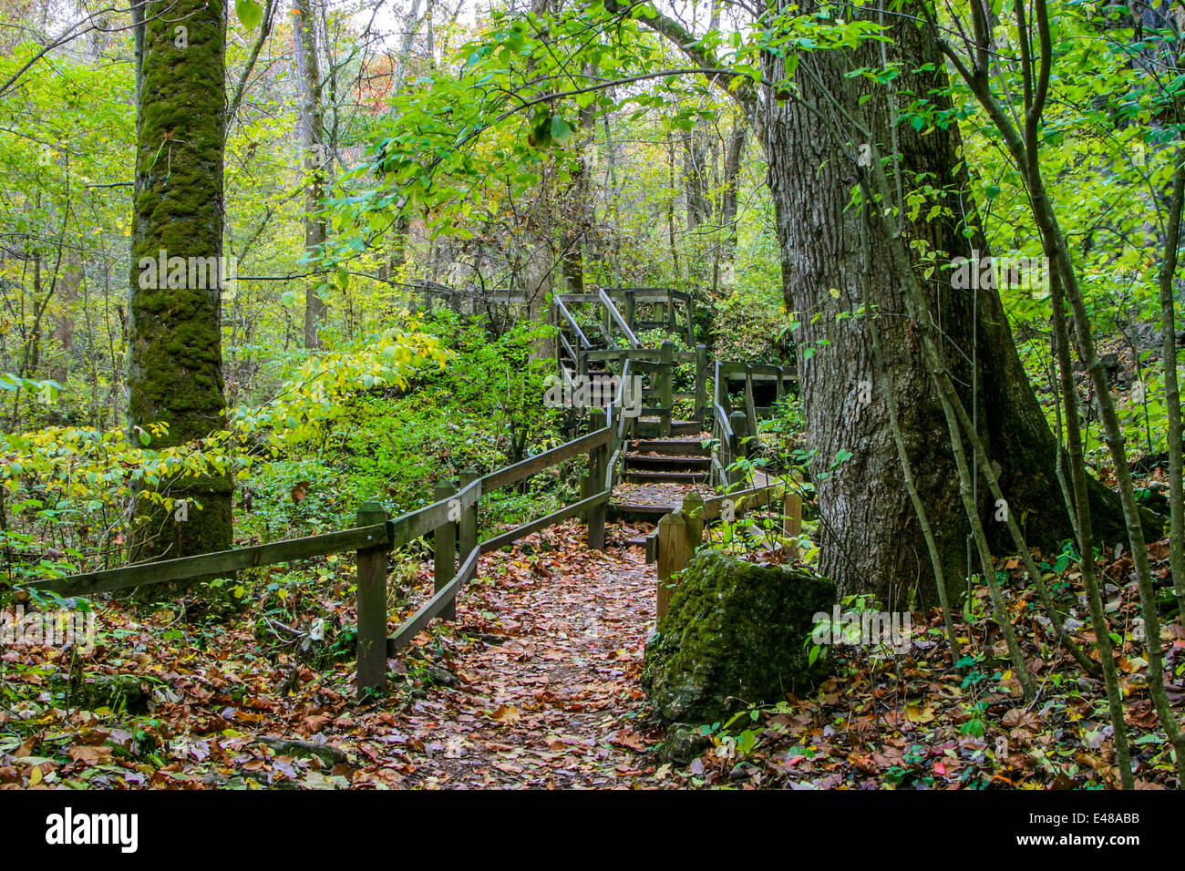A Foot Path With Wooden Hand Rails And Steps Along The Little Miami River At Clifton Gorge, Clifton Ohio, USA Stock Photo