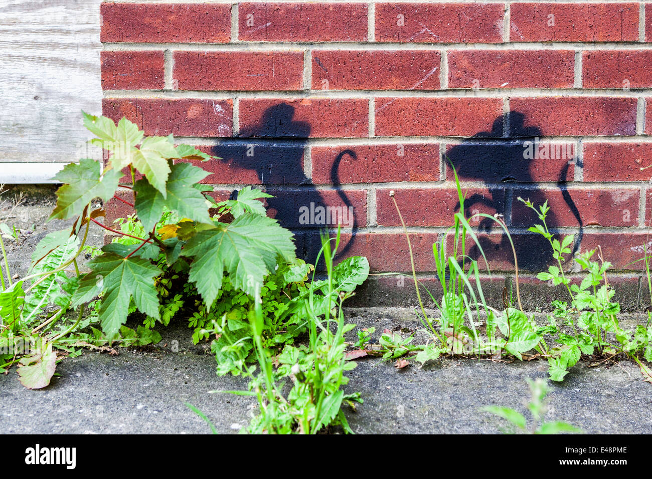 Street art rats - rat stencil on a brick wall of the closed Mereway Day Centre - Stock Image