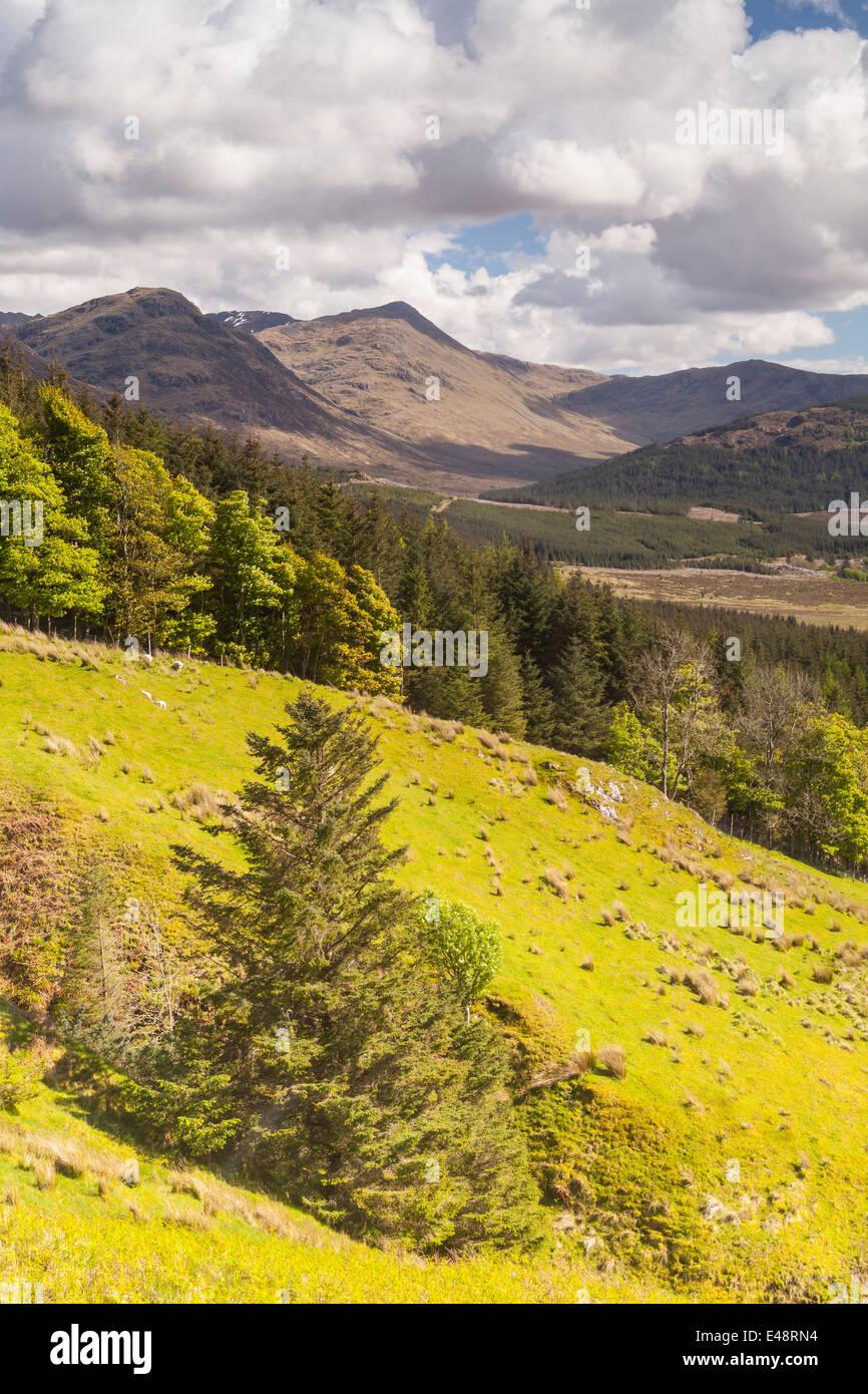 Glen More in the Scottish Highlands. - Stock Image