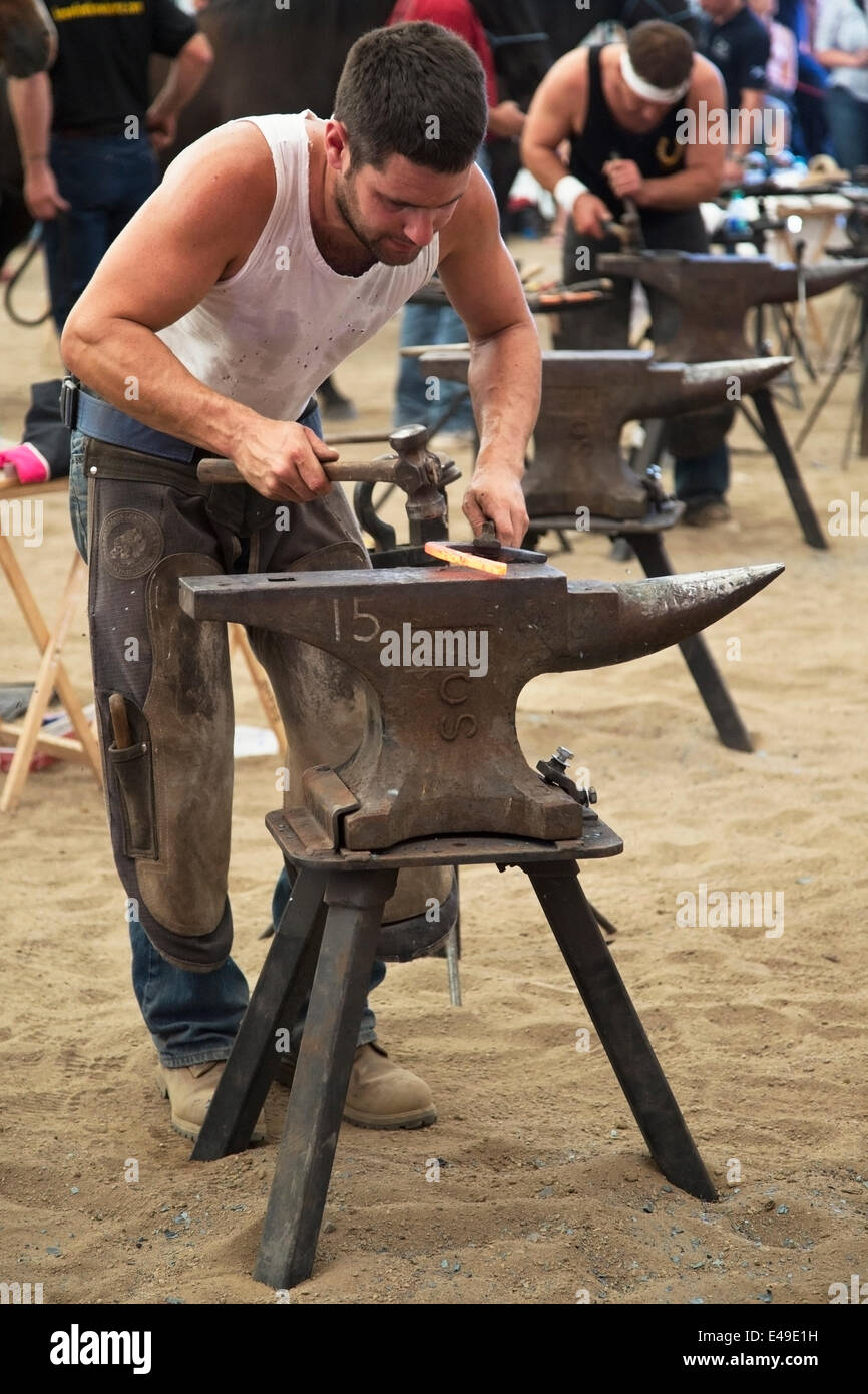 Calgary, Alberta, Canada. 06th July, 2014. Farrier forgeing horse shoe with rounding hammer as he competes in the - Stock Image