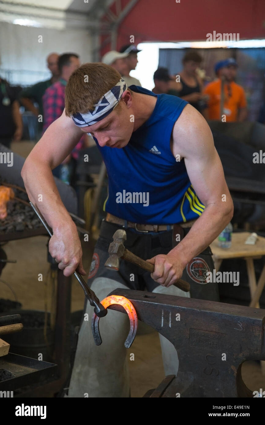 Calgary, Alberta, Canada. 06th July, 2014. Farrier holding hot horse shoe with fire tongs and shaping it with rounding - Stock Image