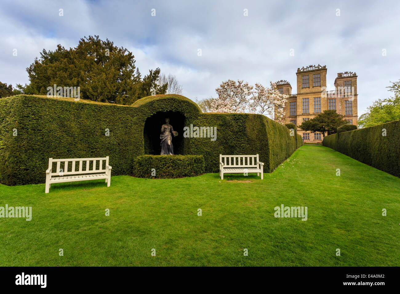 Yew hedge, seats and sculpture in spring at Hardwick Hall, near Chesterfield, Derbyshire, England, United Kingdom, - Stock Image