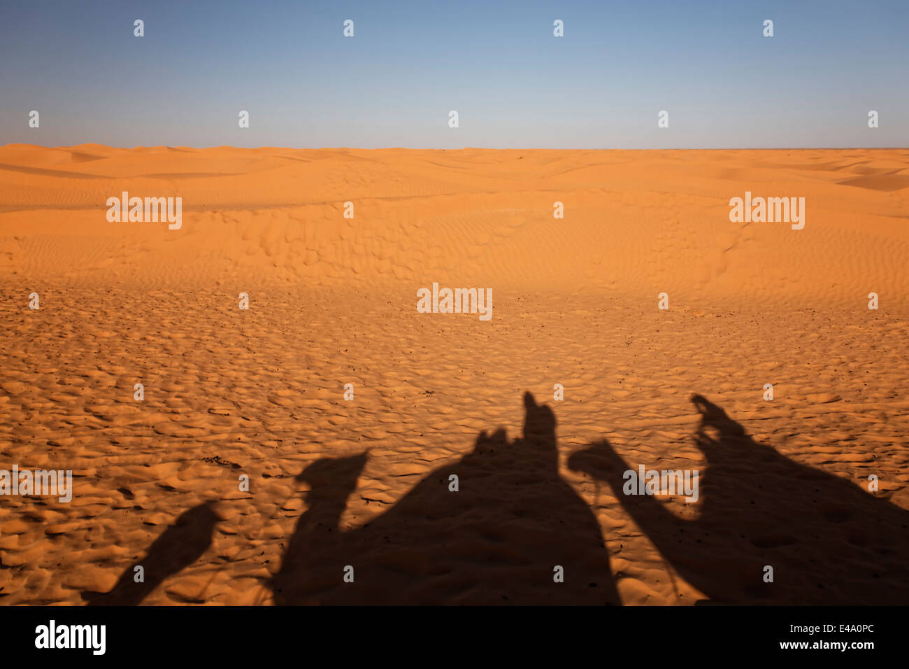Africa, North Africa, Tunesia, Maghreb, Sahara near Ksar Ghilane, Shadows of a caravan with dromedaries and tourists - Stock Image