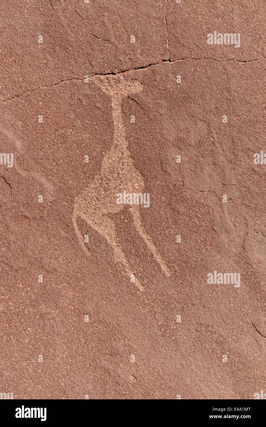 Africa, Namibia, Twyfelfontein, prehistorical rock engraving of giraffe - Stock Image
