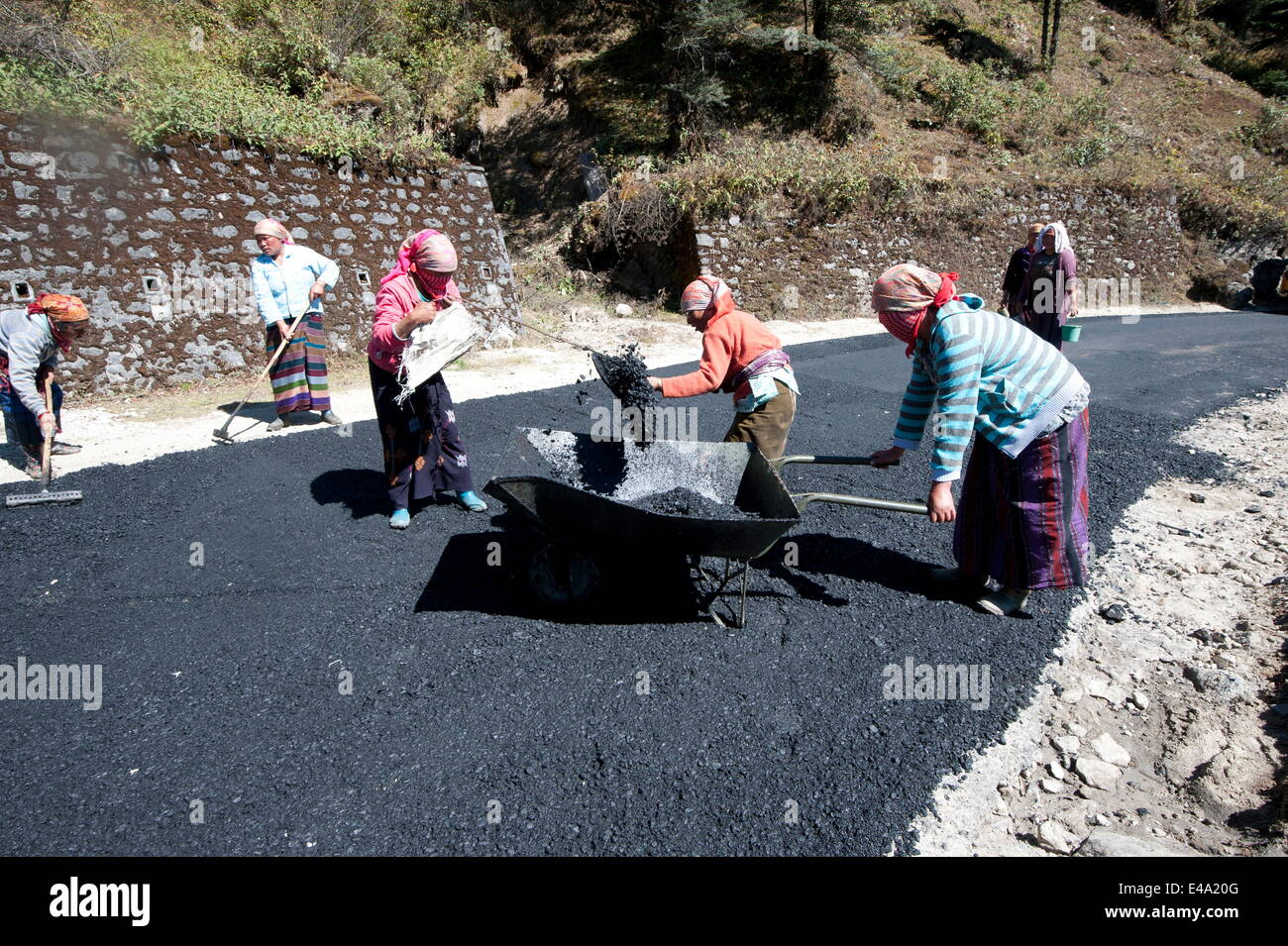 Female roads workers spreading...