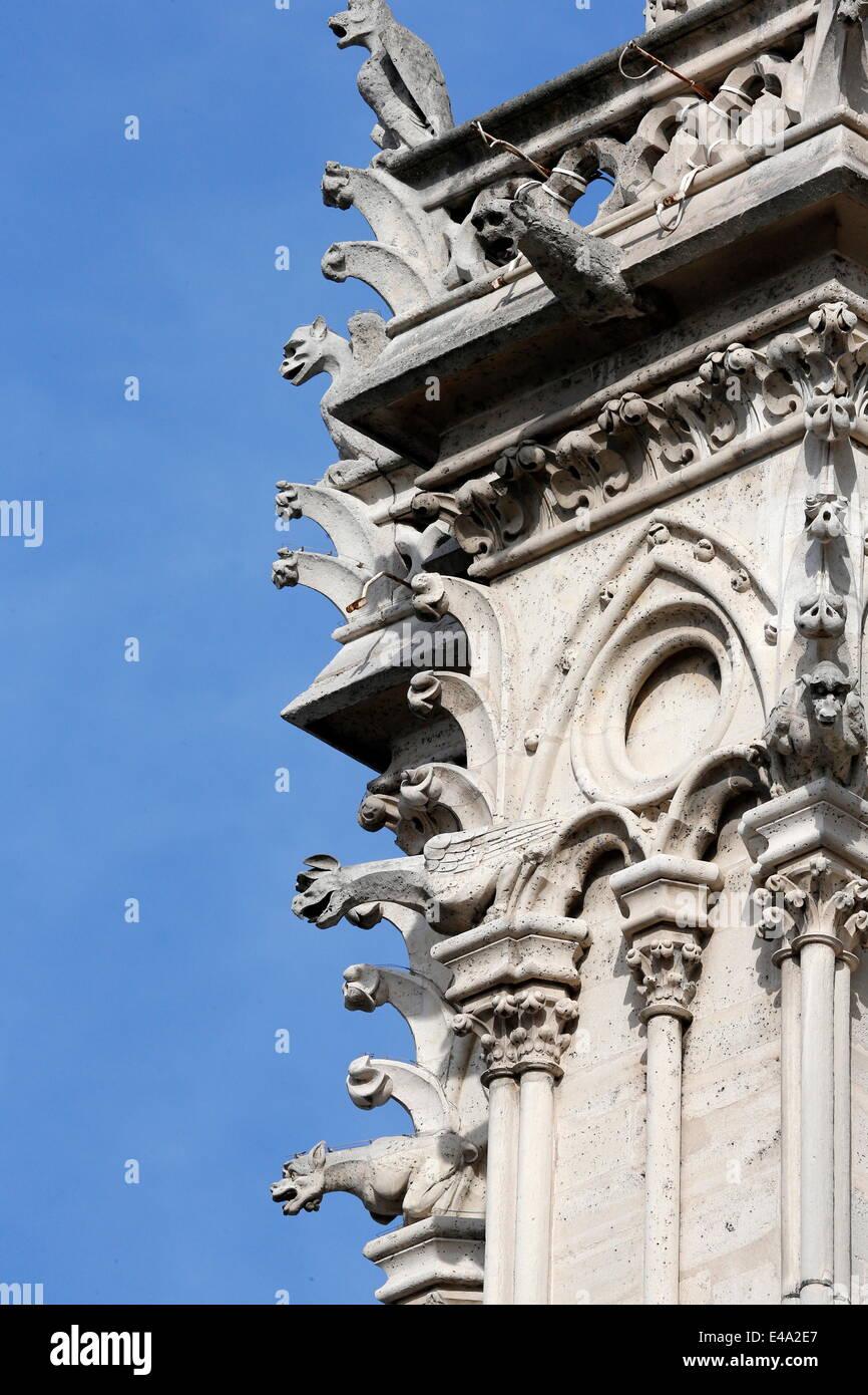 Gargoyles, Notre Dame de Paris cathedral, Paris, France, Europe - Stock Image