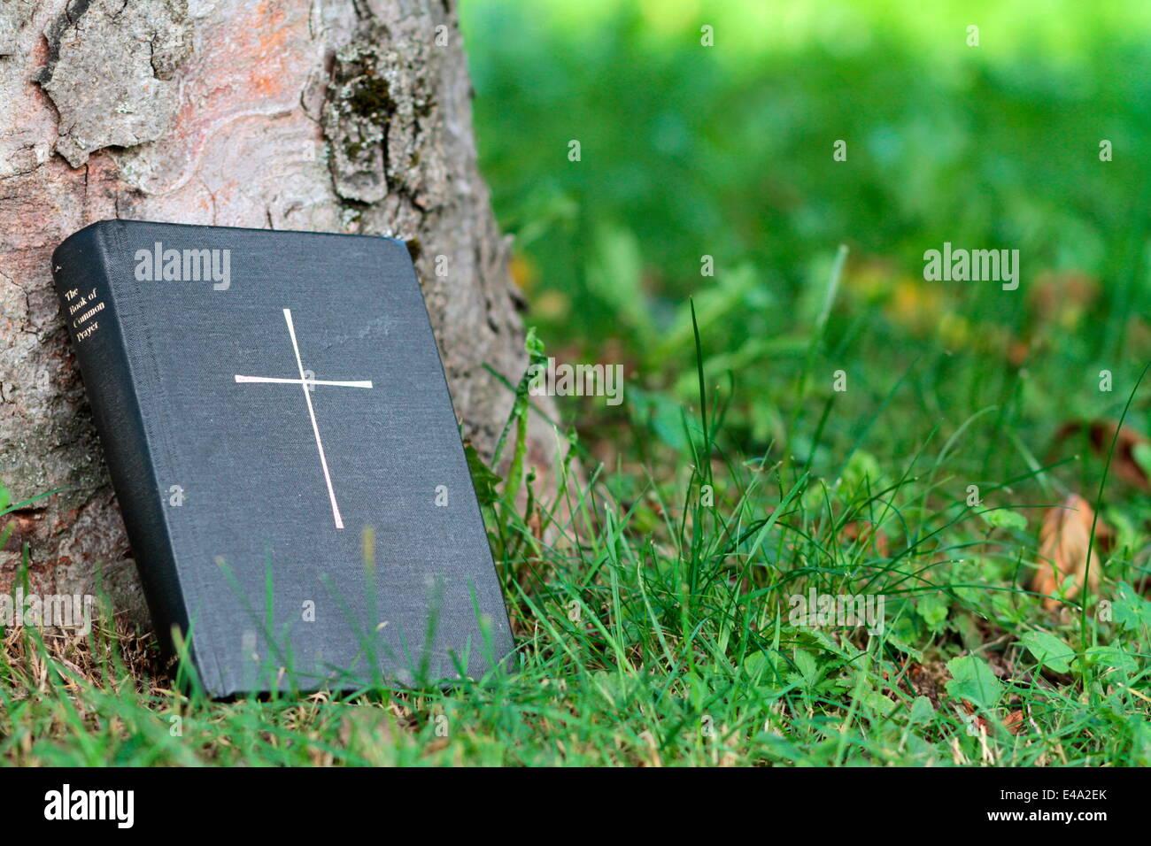 Bible, Haute-Savoie, France, Europe Stock Photo