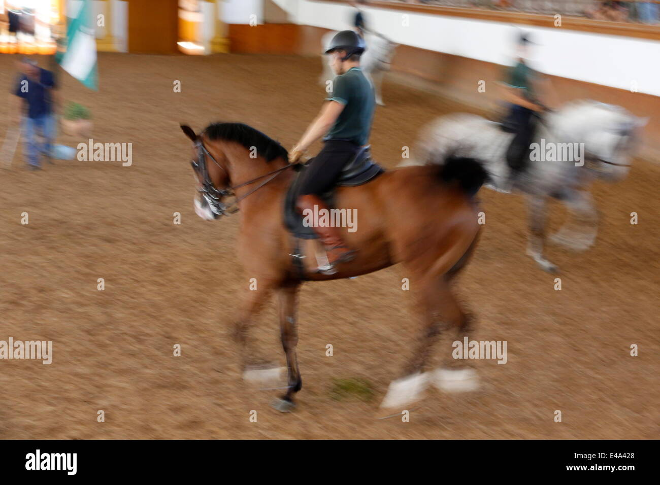 The Royal Andalusian School of Equestrian Art training, Jerez, Andalucia, Spain, Europe - Stock Image