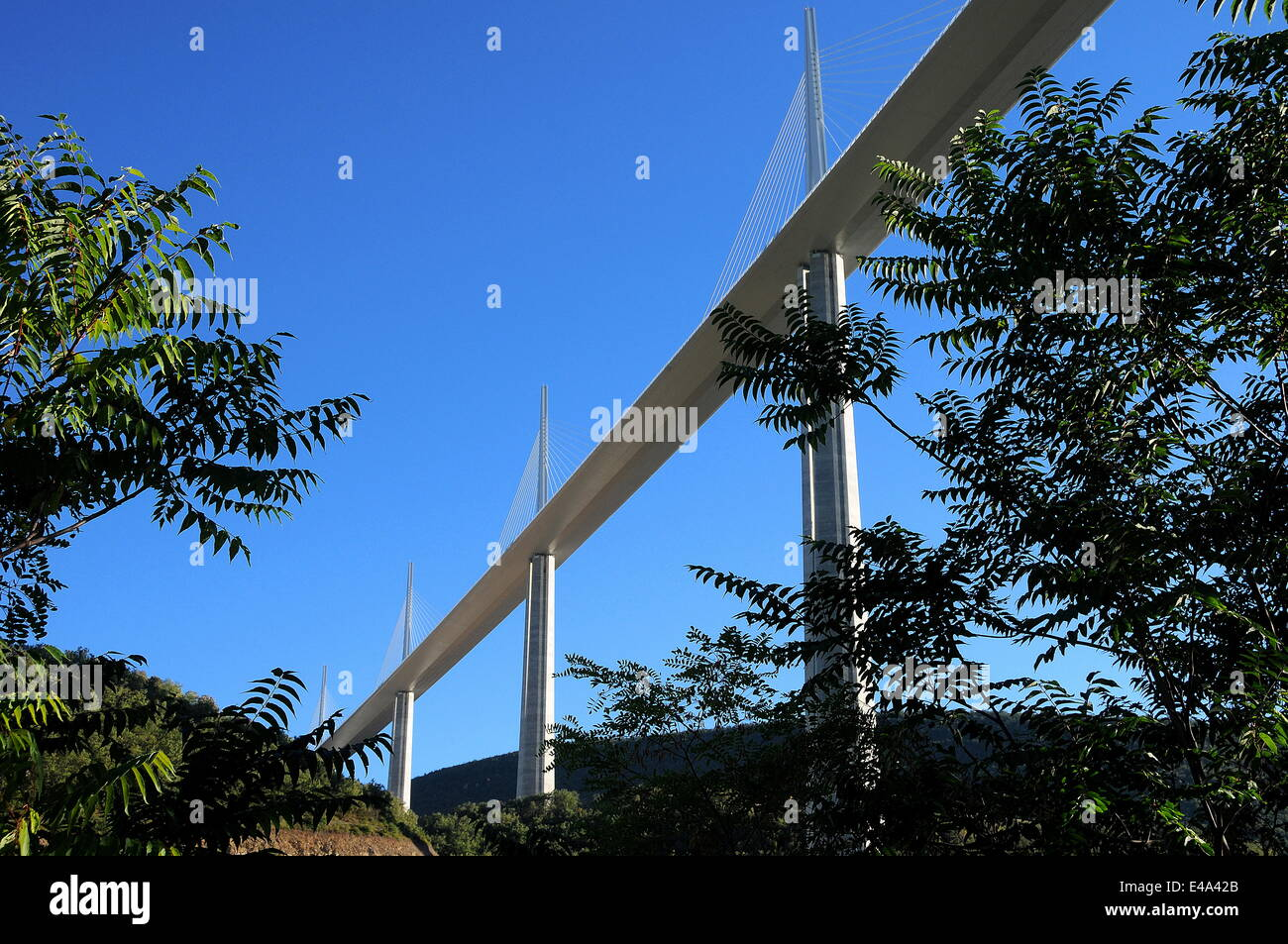 Millau Viaduct in southern France, Aveyron, France, Europe - Stock Image