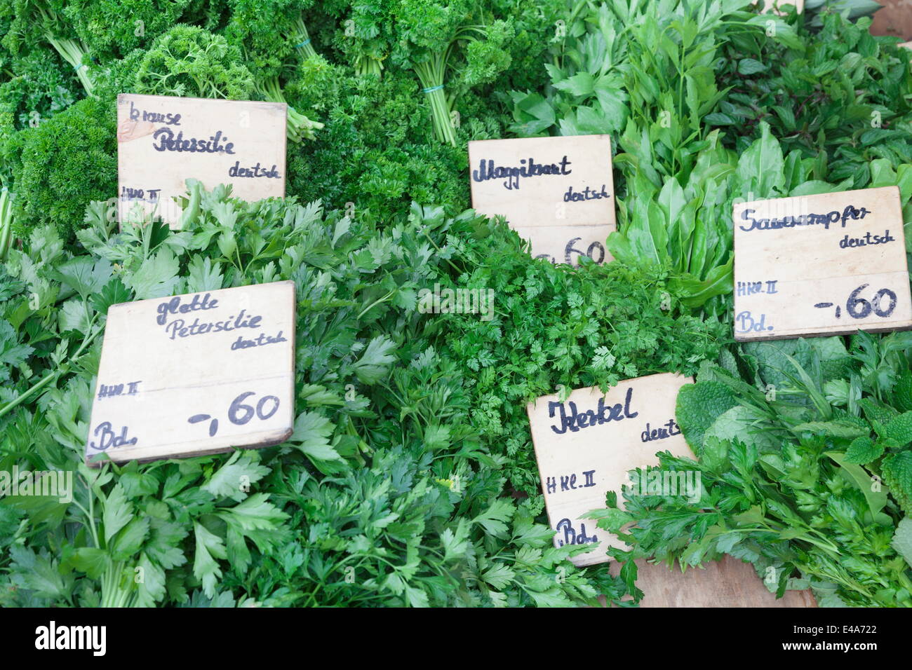 Fresh herbs at a market stall, weekly market, market place, Esslingen, Baden Wurttemberg, Germany, Europe - Stock Image