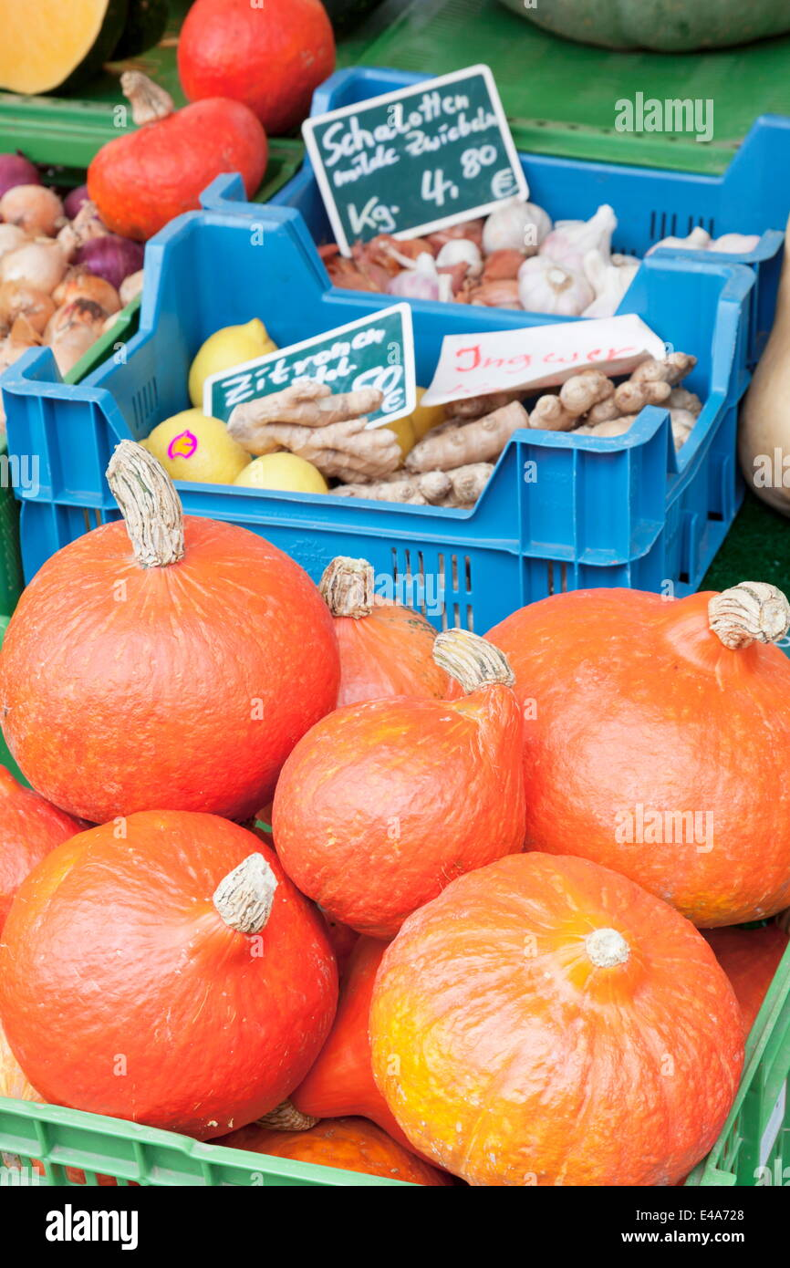 Pumpkins, onions, ginger, potatoes, garlic and lemons at a market stall, Esslingen, Baden Wurttemberg, Germany - Stock Image