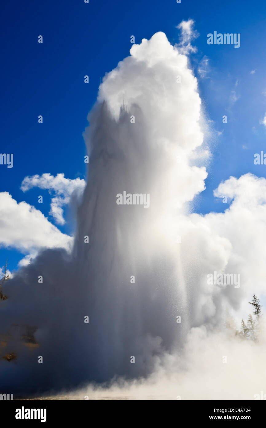 Grand Geyser erupts and steam blocks the sun, Upper Geyser Basin, Yellowstone National Park, UNESCO, Wyoming, USA - Stock Image
