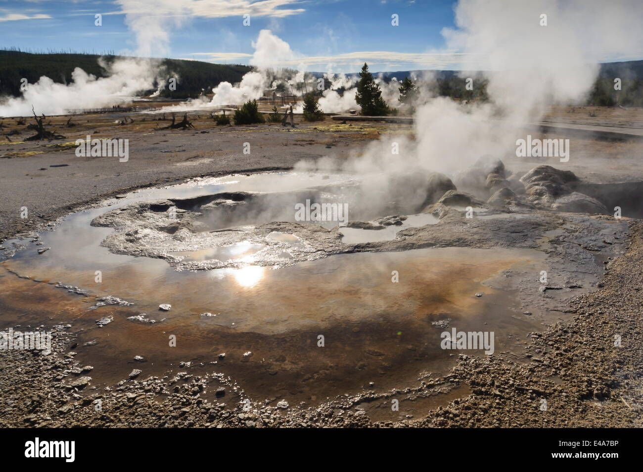 Yellowstone thermal features emit steam backlit by sun, Yellowstone National Park, UNESCO, Wyoming, USAWyoming, Stock Photo