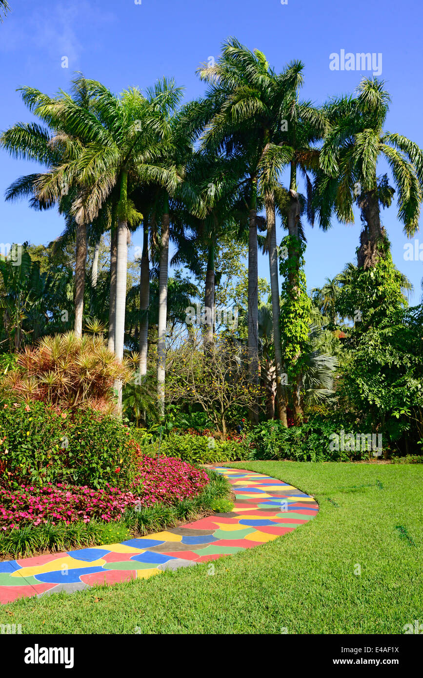 Sunken Gardens Botanical colorful path palm trees St. Petersburg FL ...