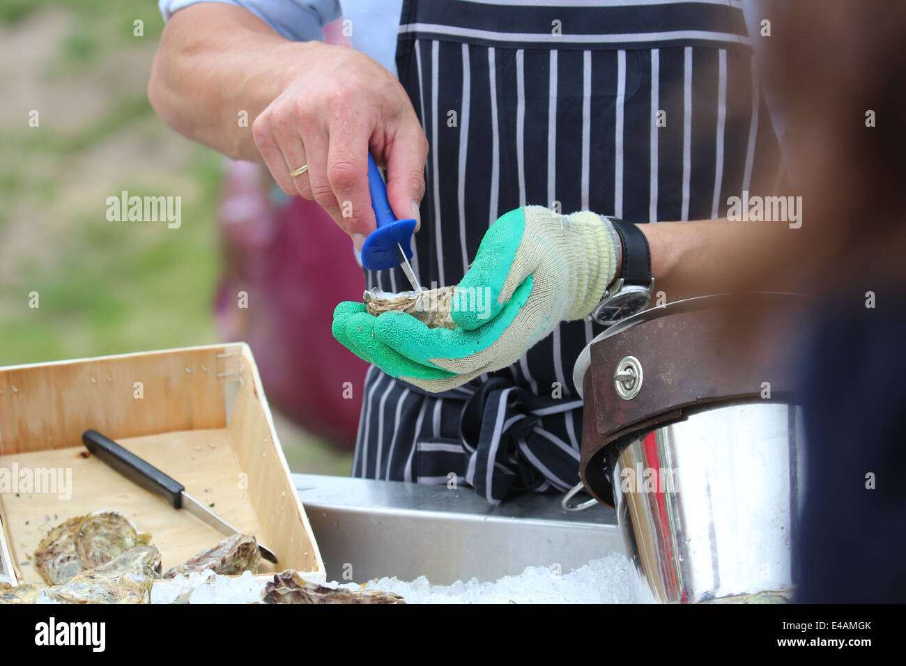 Shucking oysters Stock Photo
