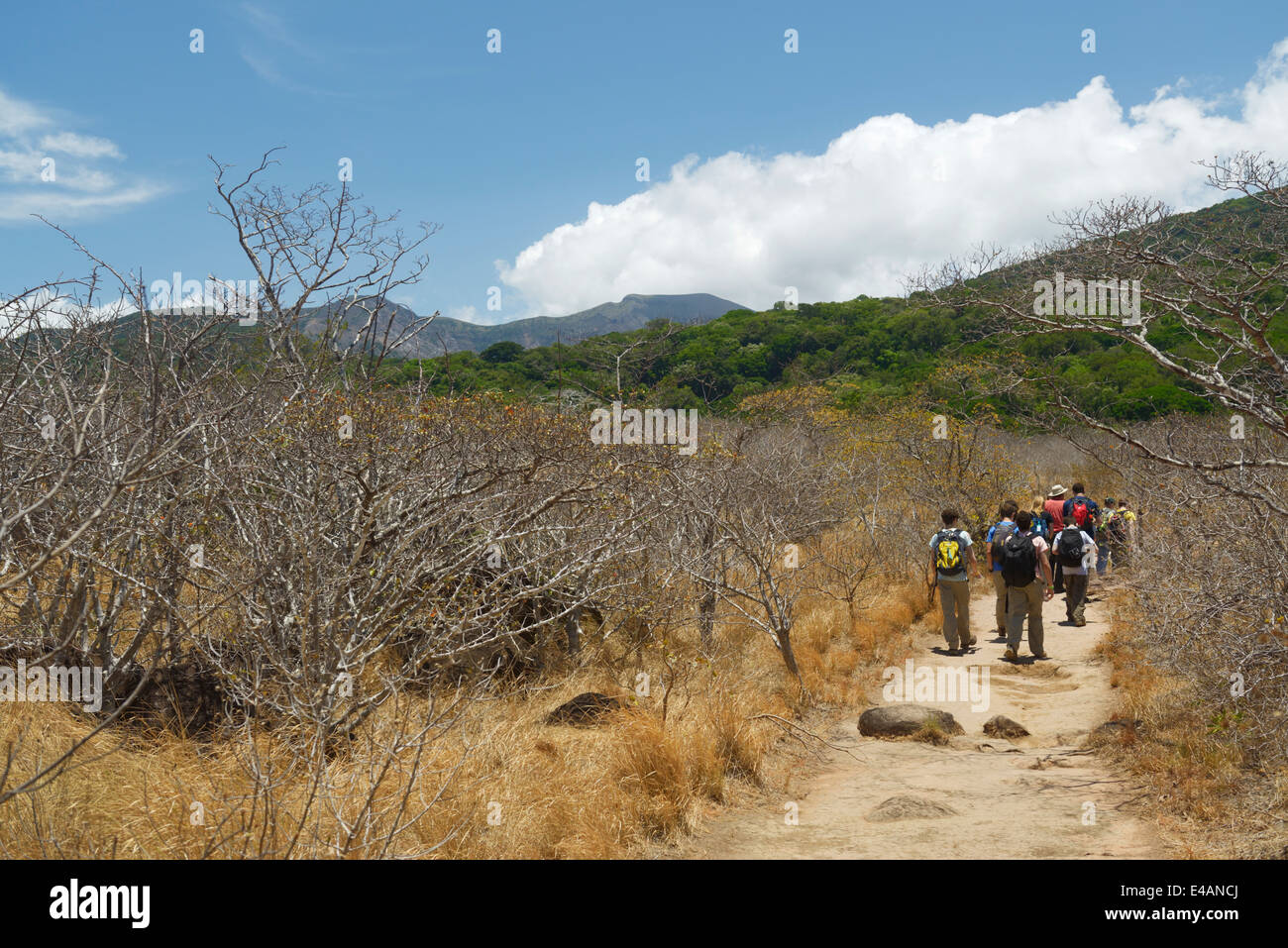 Ecotourism group hiking, Rincon de la Vieja National Park, Costa Rica Guanacaste Province - Stock Image