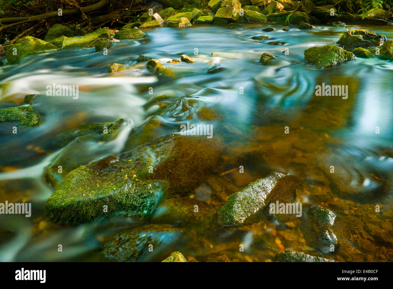 little creek floating around mossy rocks, small waterfall - Stock Image