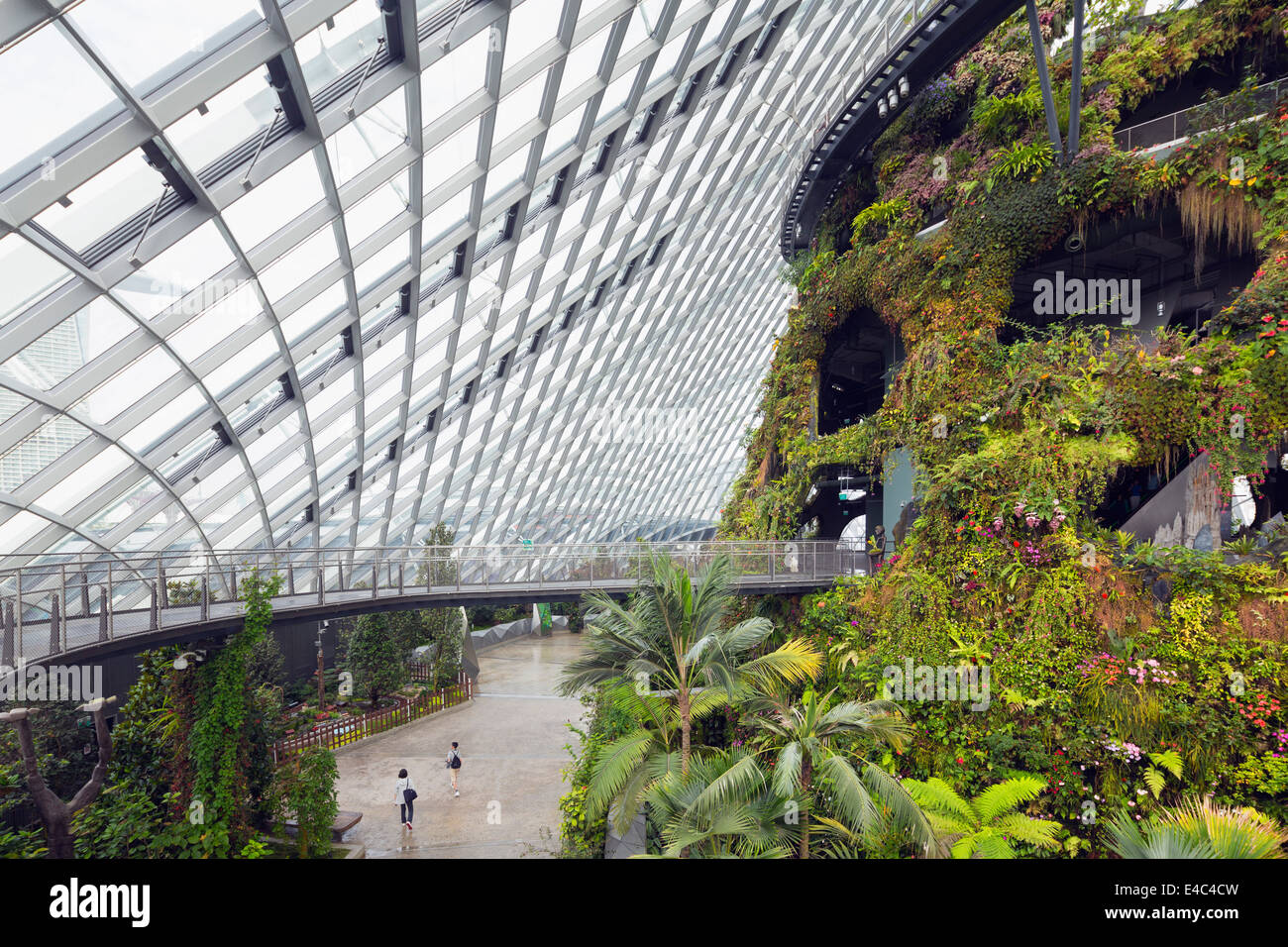 South East Asia, Singapore, Gardens by the Bay Cloud Forest botanic garden, canopy walkway Stock Photo