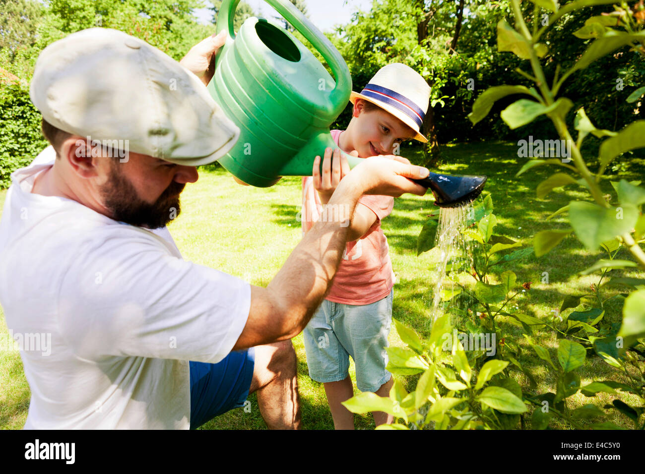 Father and son watering plants, Munich, Bavaria, Germany - Stock Image