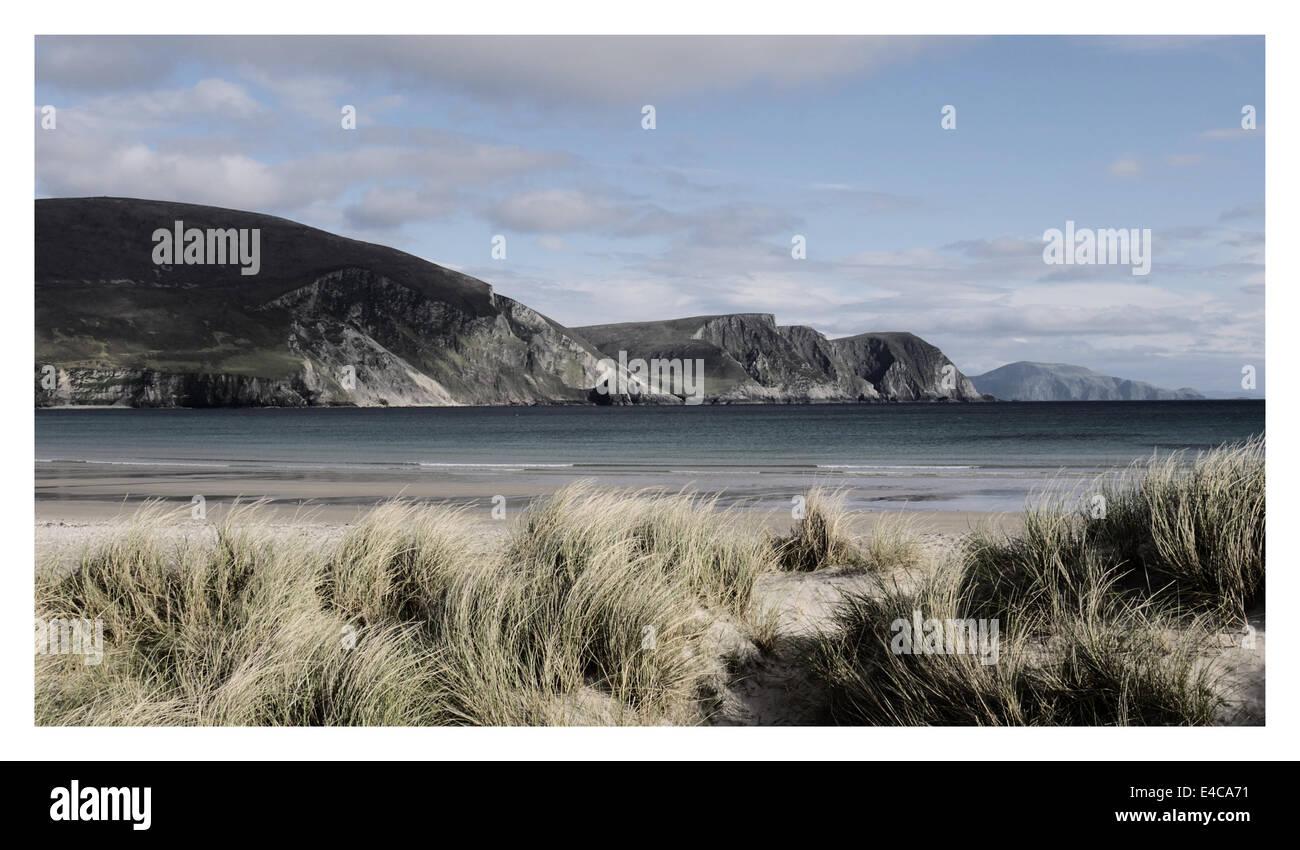 Cliffs, Achill, Marron grass, early summer. - Stock Image