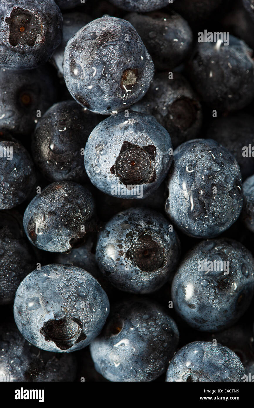 Fresh Organic Raw Blueberries in a Basket - Stock Image