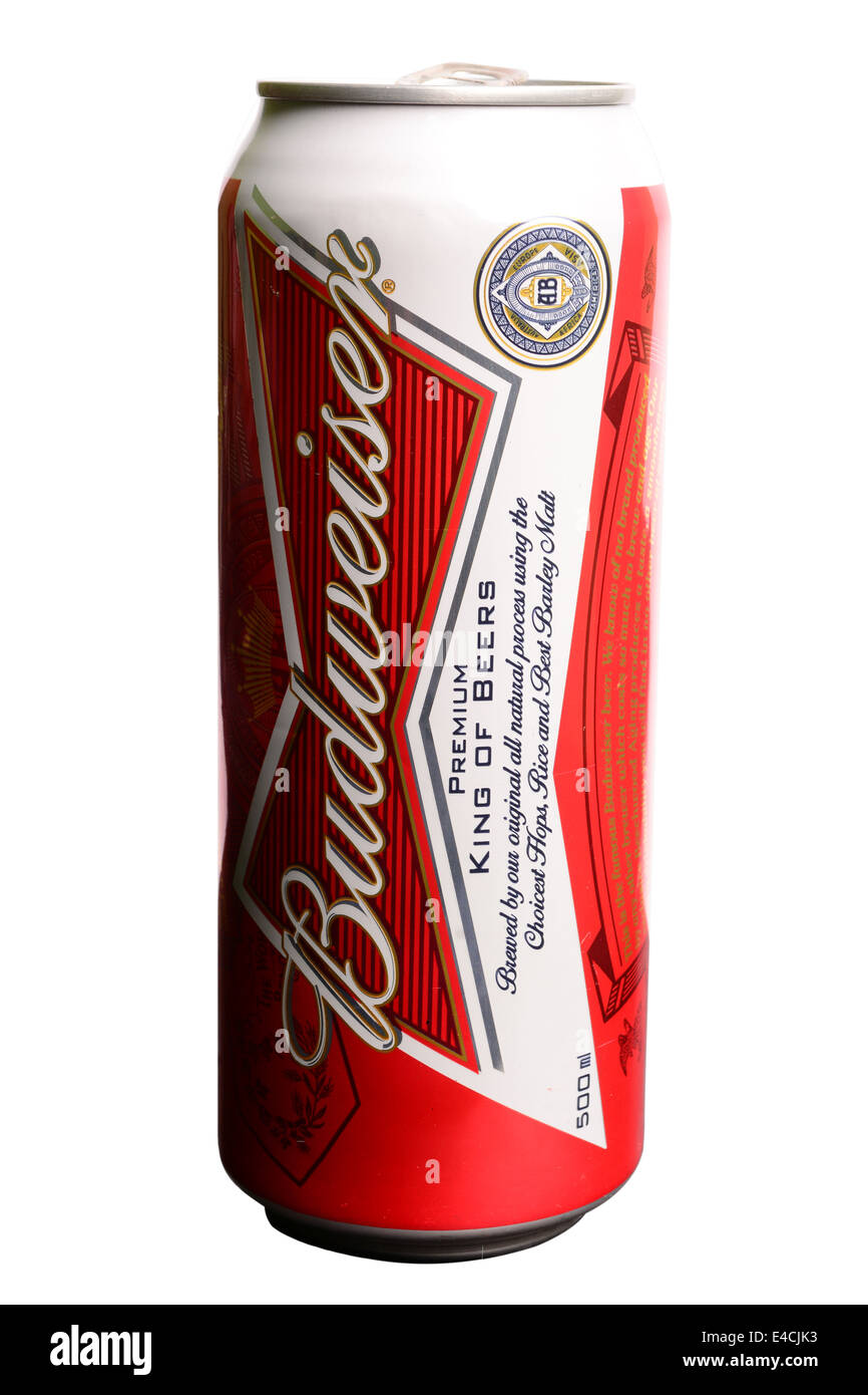 Can of Budweiser beer on white background - Stock Image