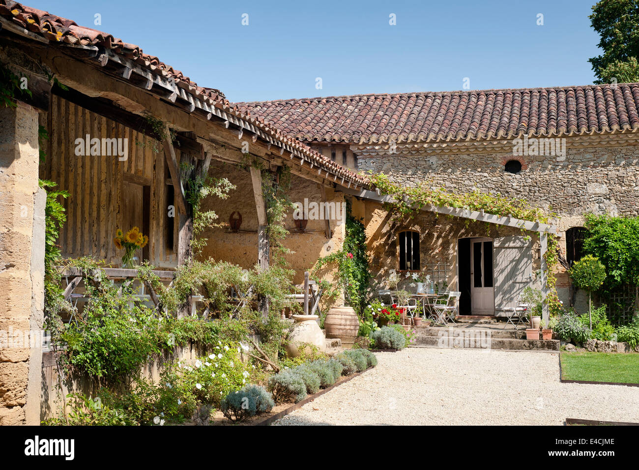 Exterior facade of old converted french barn with lean to and climbing plants - Stock Image