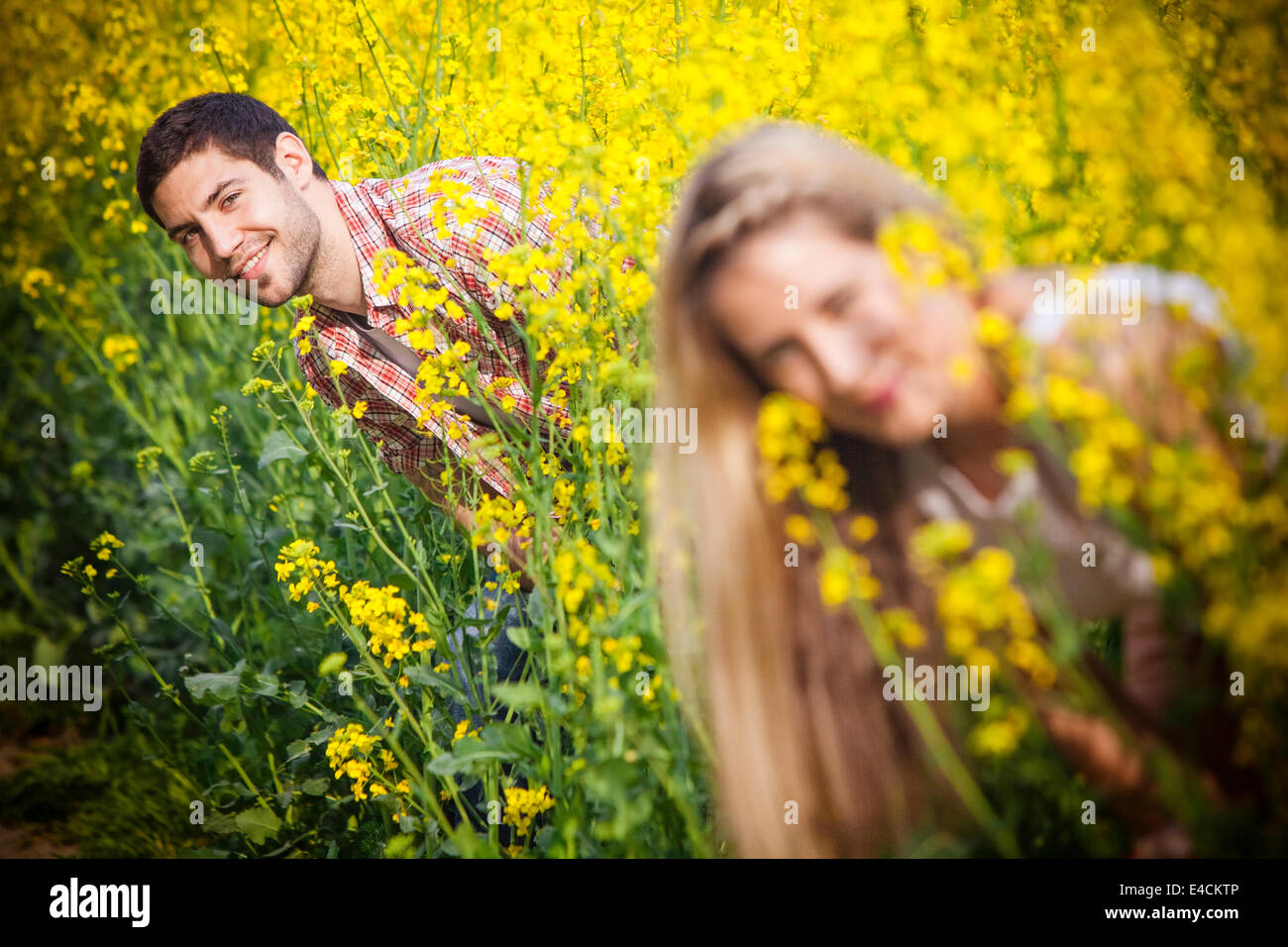 Young couple in colza field playing hide and seek, Tuscany, Italy - Stock Image