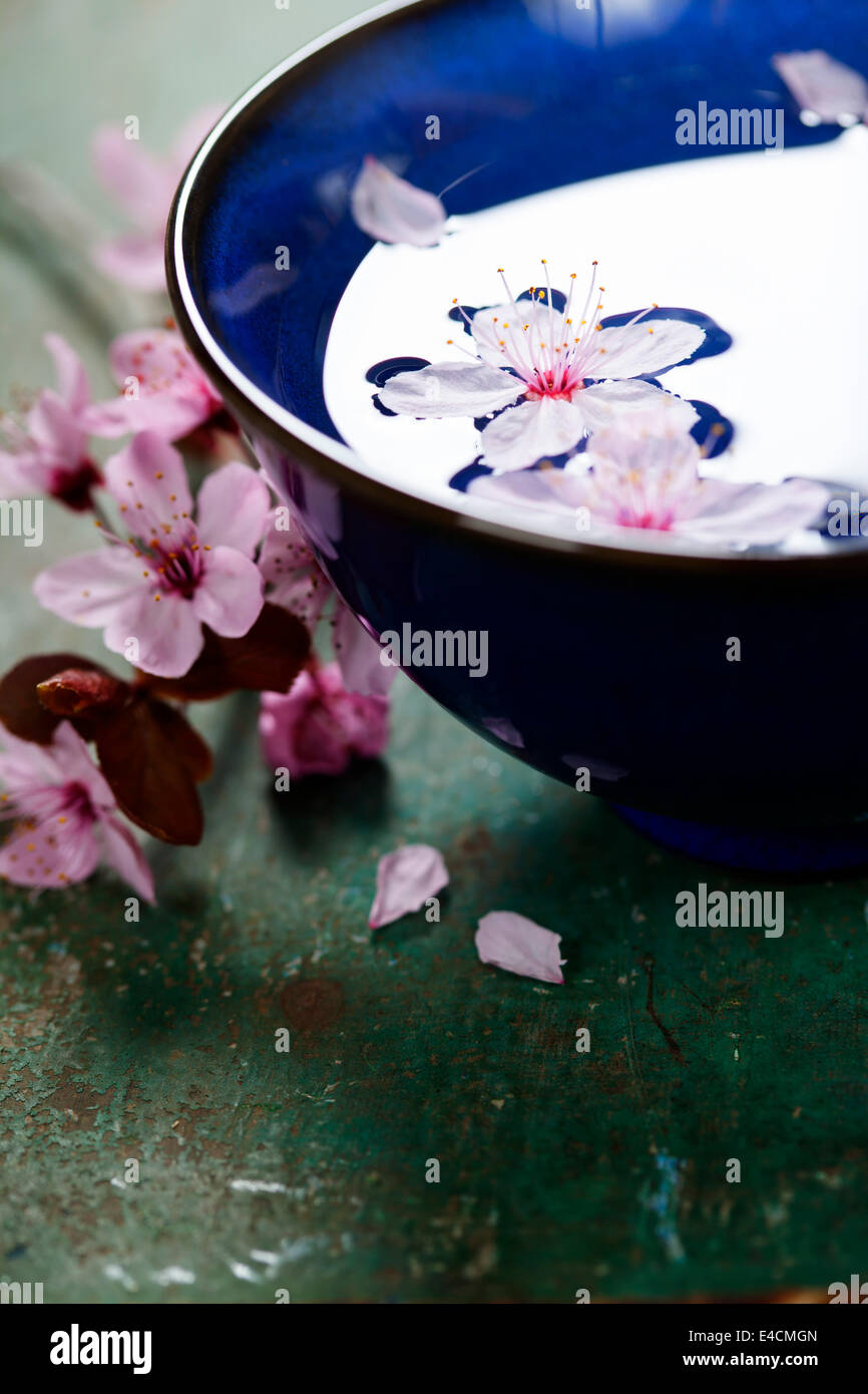 spring flowers for spa and aromatherapy over wooden background - Stock Image