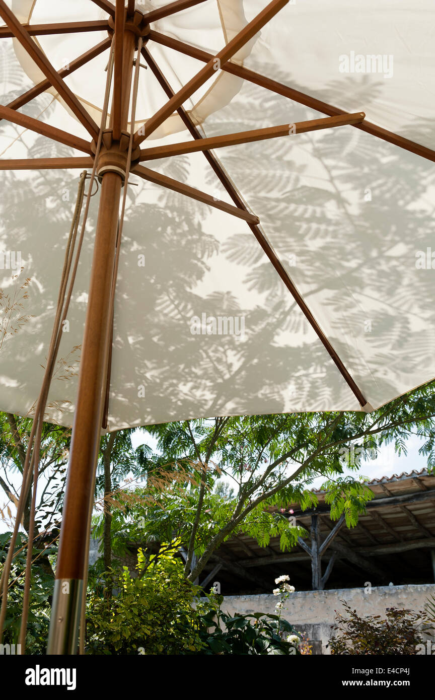 Leaf shadows seen from the inside of a parasol - Stock Image