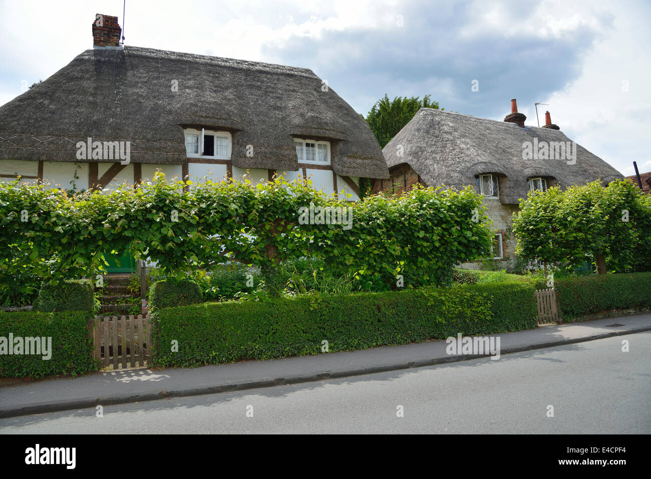 Thatched country cottages in the village of  Selborne, Hampshire, England, UK Stock Photo