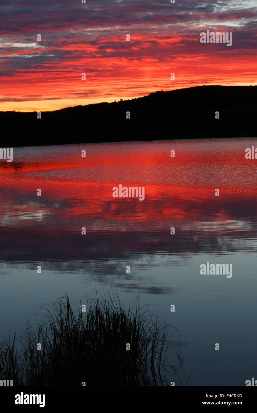 Sunset in Denali National Park, Alaska.  - Stock Image