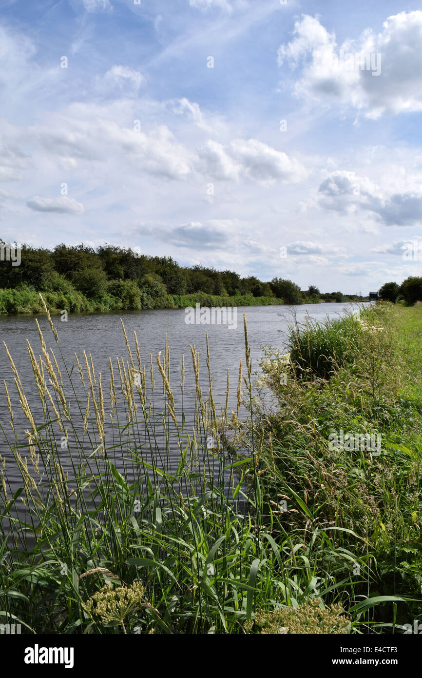 The view looking along a canal towpath on a wonderful summer day. - Stock Image