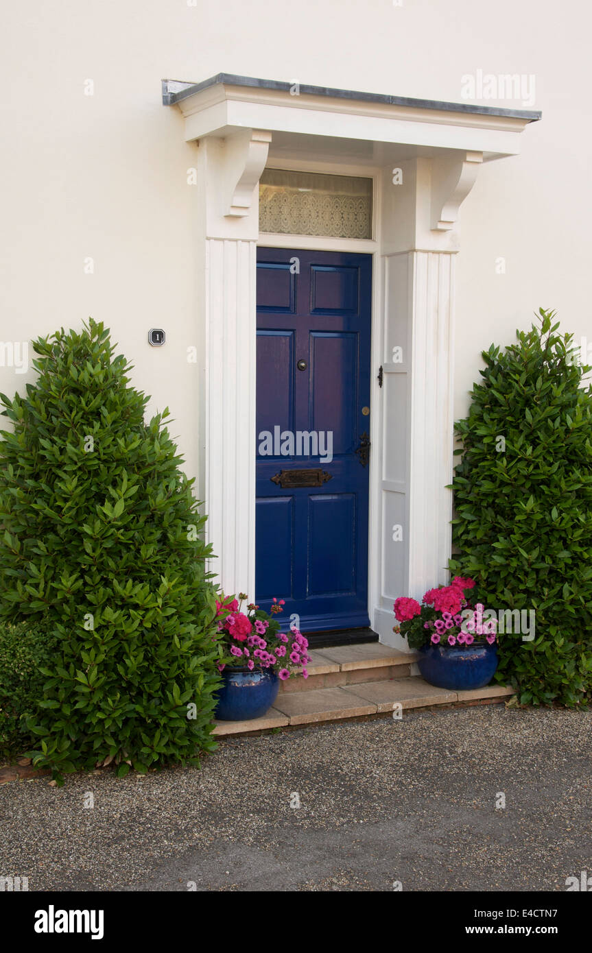 Conical bay trees and potted flowers in elegant blue containers ...