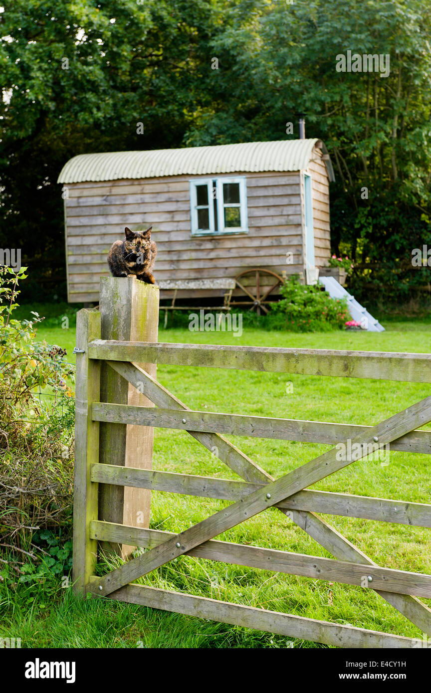 A wooden shepherds hut in an English country garden - Stock Image