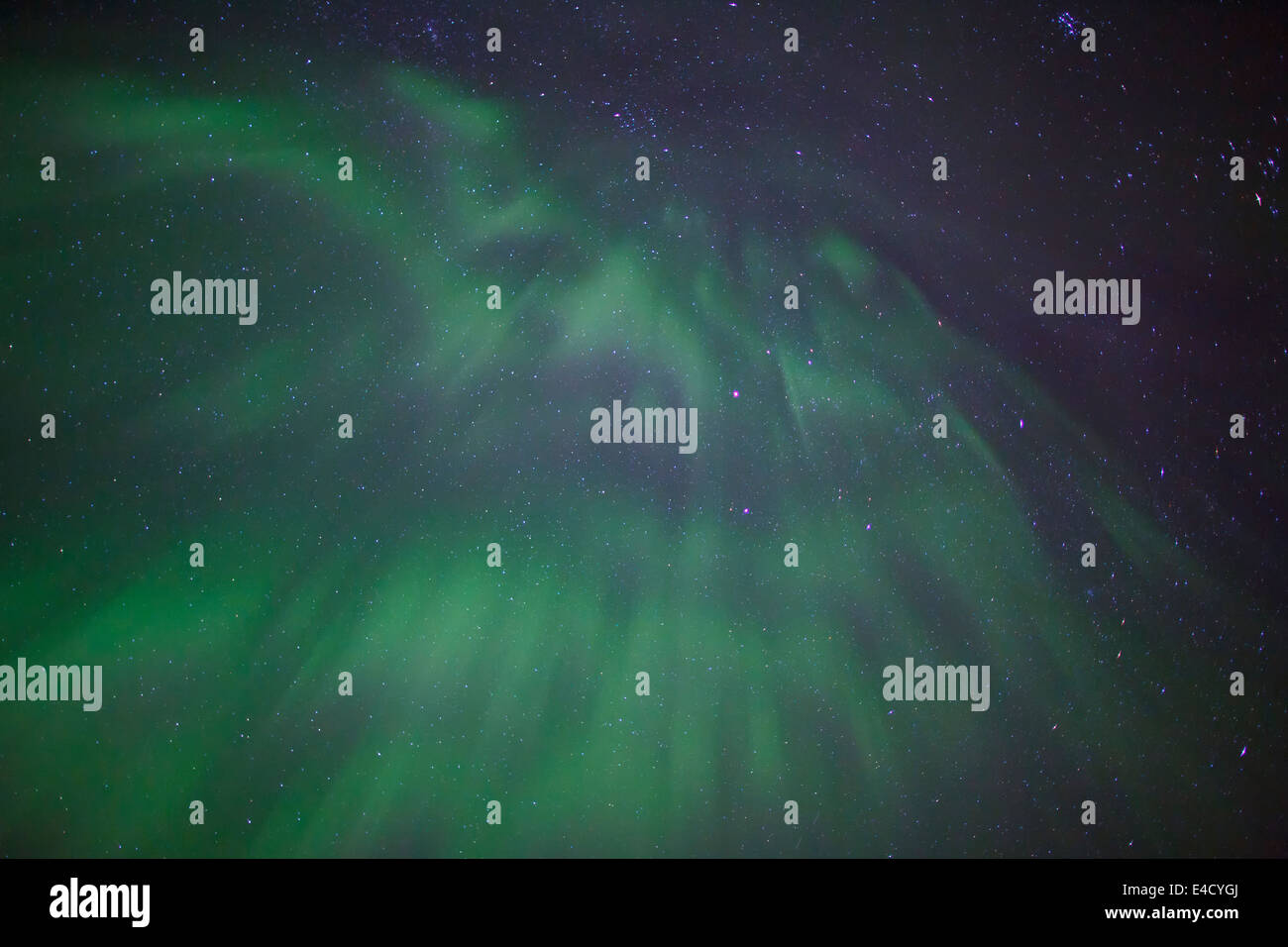 Aurora borealis over Chugach National Forest, near Seward, Alaska. - Stock Image