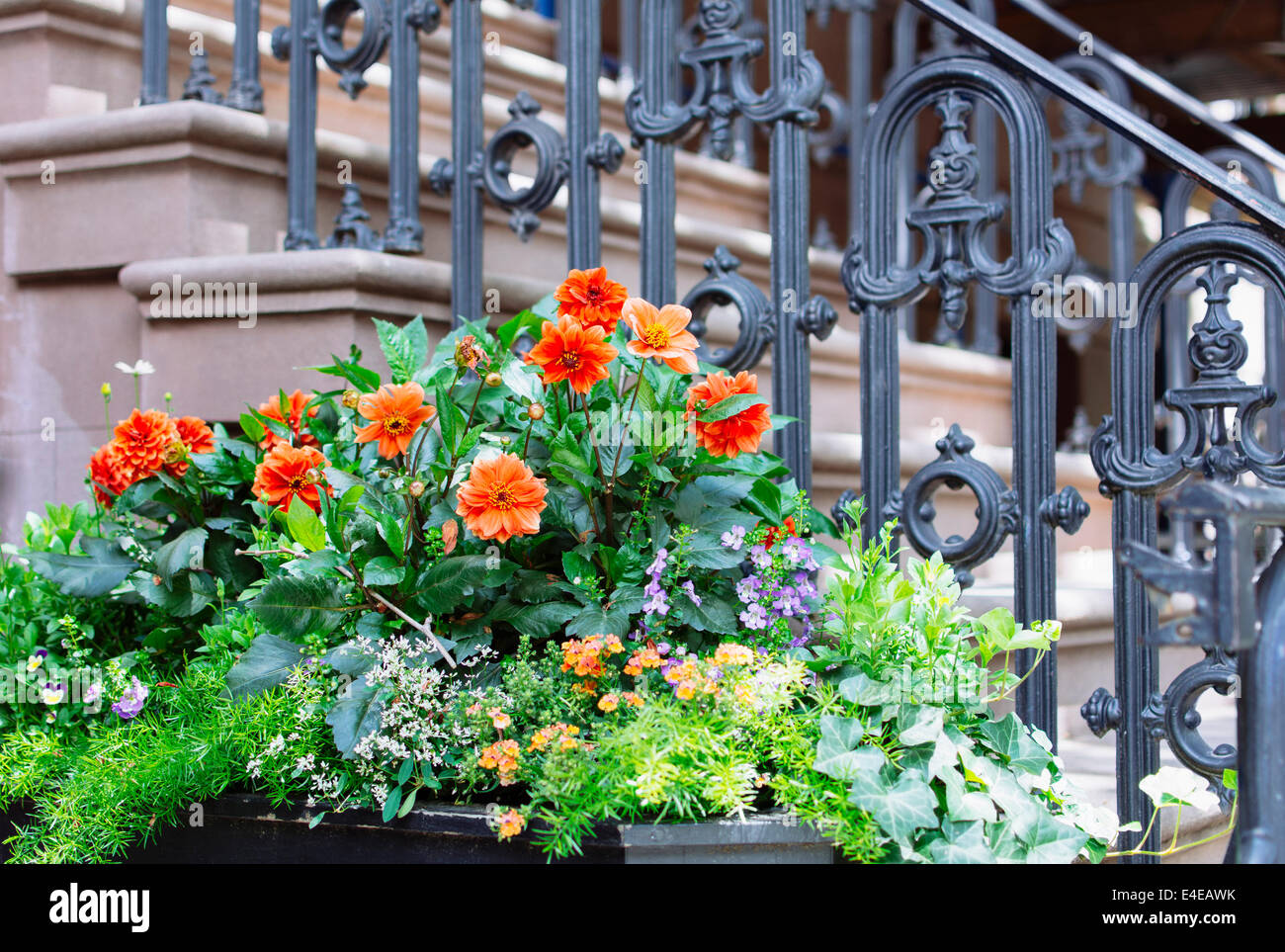 Flowers In Front Of Brownstone West Village New York City Ny Usa