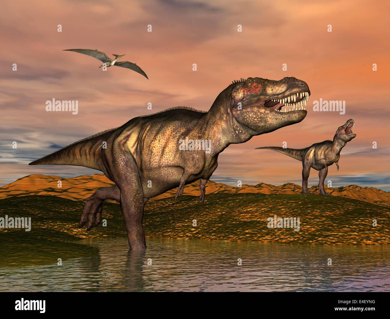Dinosaur in habitat illustration pterodactyl stock photos - Dinosaur volant ...
