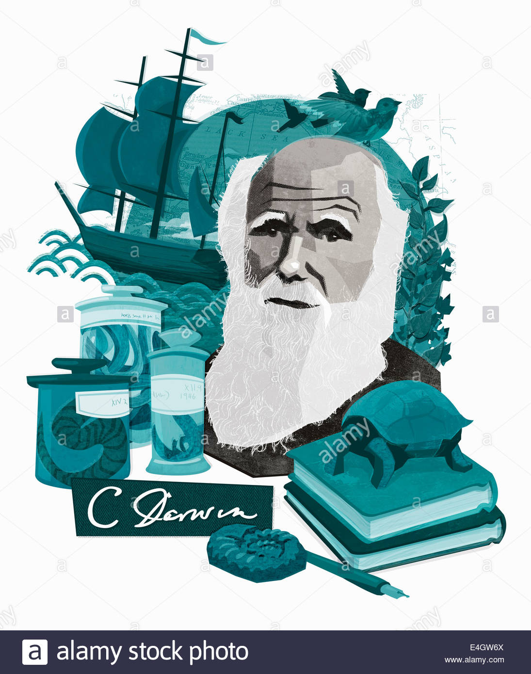 Montage of Charles Darwin, natural science and discovery - Stock Image