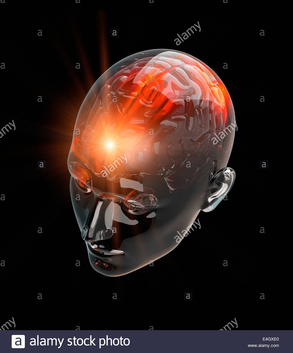 Illuminated activity from red human brain in transparent head - Stock Image